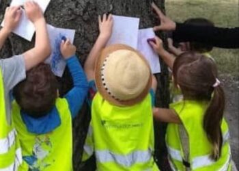 Outdoor learning (part three)